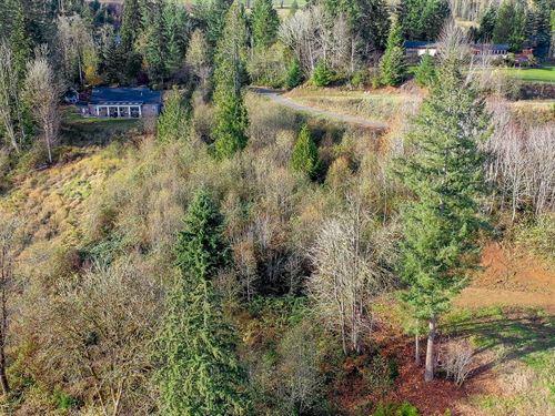 Beautiful Recreational Acreage : Mossyrock : Lewis County : Washington
