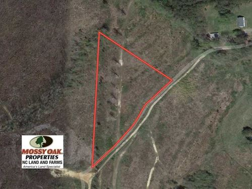 3.73 Acres of Rural Residential La : Stoney Creek : Dinwiddie County : Virginia
