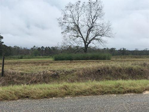 Building Lot in Houston County, AL : Dothan : Houston County : Alabama