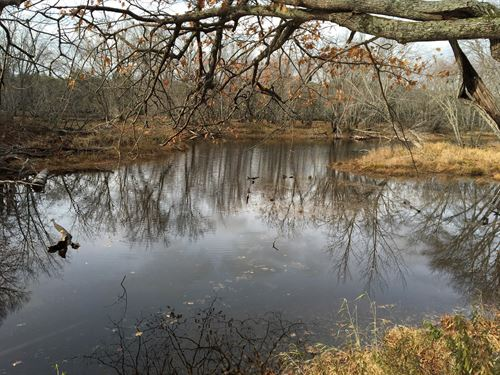 Riverfront Lot Mattawamkeag, Maine : Mattawamkeag : Penobscot County : Maine