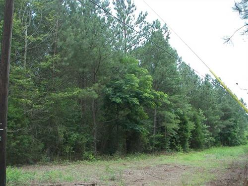 10.6 Acres For Sale on Co Rd 70 : Sand Rock : Cherokee County : Alabama