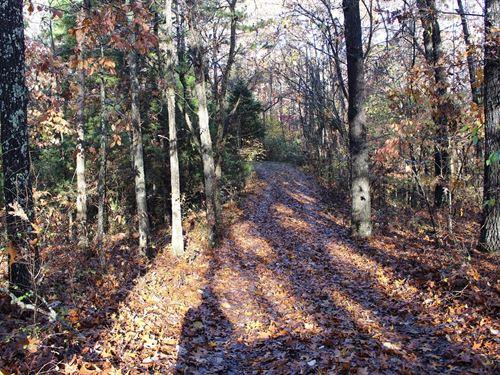 Cabin Woods Southern Missouri : Mountain Grove : Douglas County : Missouri