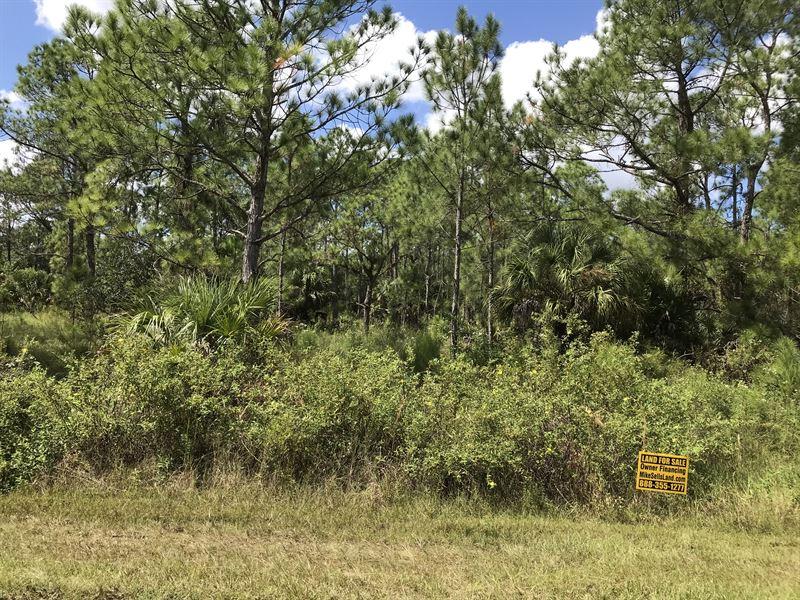 Multi-Fam Zn, Proposed Interchange : North Port : Sarasota County : Florida