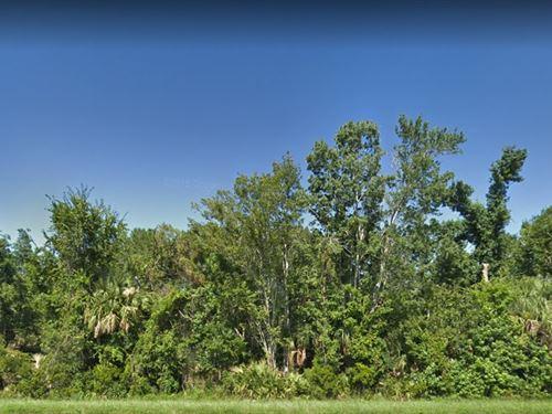 Volusia County, Fl $20,000 : Oak Hill : Volusia County : Florida