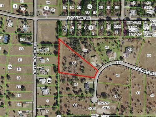 Beautiful Open Lot Crystal River : Inverness : Citrus County : Florida