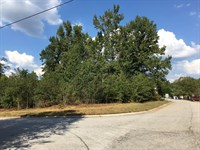 16 Residential Lots For Sale : Temple : Carroll County : Georgia