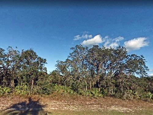 Polk County, Fl $20,000 : Lake Wales : Polk County : Florida
