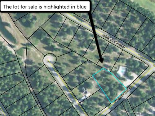 Pretty Coastal Subdivision Lot : Townsend : McIntosh County : Georgia