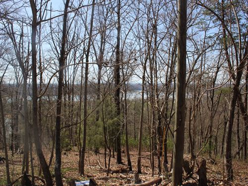 Cherokee Lake View Corner Lot : Mooresburg : Hawkins County : Tennessee