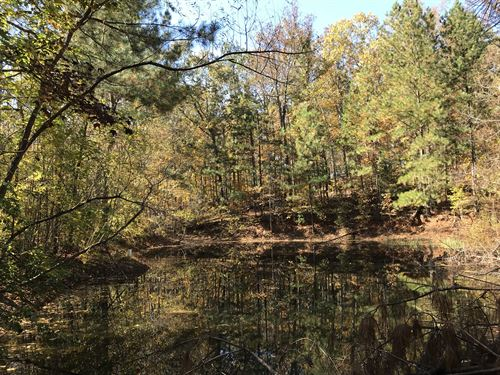 5.45 Acres, Wooded Tract With Pond : Douglasville : Douglas County : Georgia
