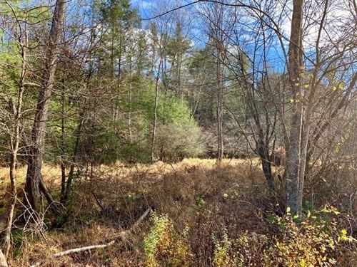 10 +/- Acres Land, Building Lot : Benton : Columbia County : Pennsylvania