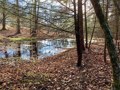 10 +/- Acres, Great Parcel : Benton : Columbia County : Pennsylvania