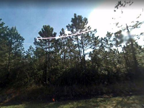 Saint Johns County, Fl $32,000 : Hastings : Saint Johns County : Florida