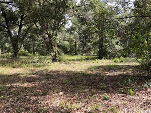 2.08 Waterfront Lot 776670 : Old Town : Dixie County : Florida