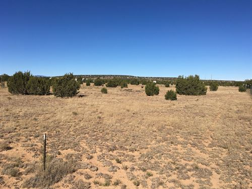 Vacant Lot Central NM Moriarty : Moriarty : Torrance County : New Mexico