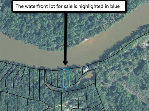 Altamaha Riverfront Lot : Jesup : Wayne County : Georgia