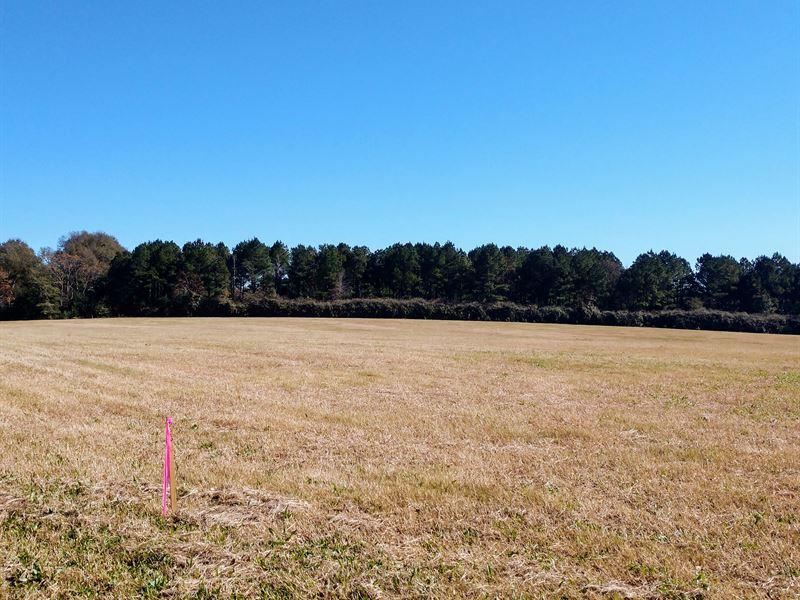 7 Acres Beautiful Pasture Land : Milner : Lamar County : Georgia