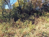 Rural Illinois Lot Close To River : Spring Grove : McHenry County : Illinois