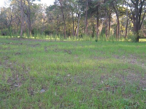 Residential Lot Frankston TX : Frankston : Anderson County : Texas