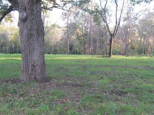 East Texas Residential Lot : Frankston : Anderson County : Texas