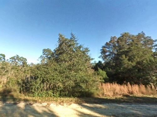 Marion County, Fl $7,000 : Fort McCoy : Marion County : Florida