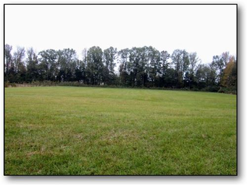 15 Acres In Montgomery County In Ki : Kilmichael : Montgomery County : Mississippi