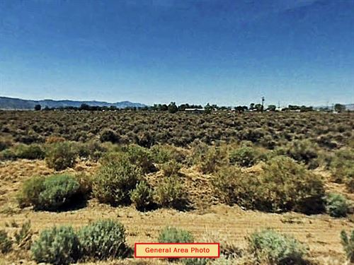 Near Half Acre Lot In Paradise : Doyle : Lassen County : California