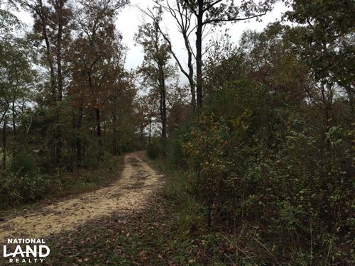 St Clair County 33 Homesite And Tim : Ashville : Saint Clair County : Alabama