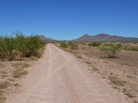 Superb 5.4 Ac Zoned R U-4 : Douglas : Cochise County : Arizona