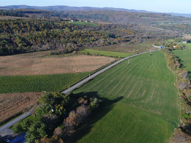 Farm Land Liquidation 3 Hrs To Nyc : Sharon Springs : Schoharie County : New York