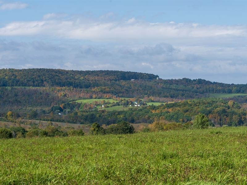 Upstate Farm Land Sale : Sharon Springs : Schoharie County : New York