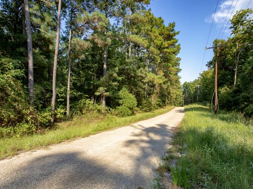 Wooded Homesite, Electricity : Cleveland : Liberty County : Texas