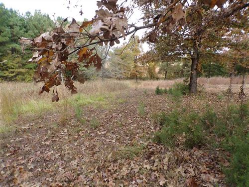Rare Residential/Recreational Acre : Antlers : Pushmataha County : Oklahoma