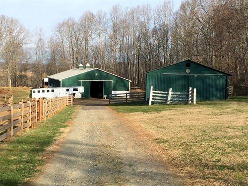 Great Horse Farm : Glade Hill : Franklin County : Virginia