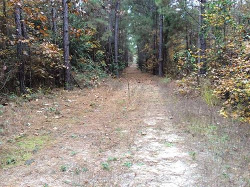 Heavily Wooded 18+ Acres 10 Minute : Nacogdoches : Texas