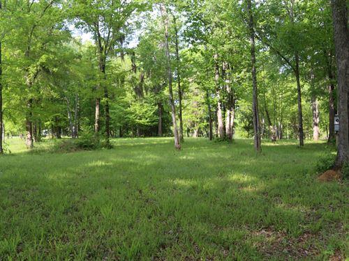 Alabama River, Fishermans Bay Lot : Lowndesboro : Lowndes County : Alabama
