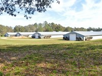 4 House Broiler Poultry Farm For Sa : Summit : Pike County : Mississippi
