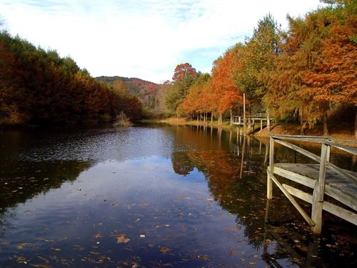 Blue Ridge Mountain Retreat Pond : Mouth Of Wilson : Grayson County : Virginia