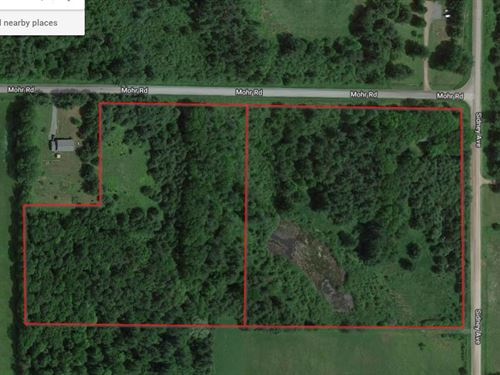 Wooded Land With Electric And Well : Neillsville : Clark County : Wisconsin
