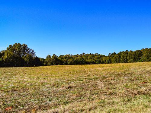 11 Ac, Level, Open Land Near Moore : Moore : Spartanburg County : South Carolina