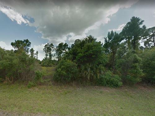 Sarasota County, Fl $25,000 : Arcadia : Sarasota County : Florida