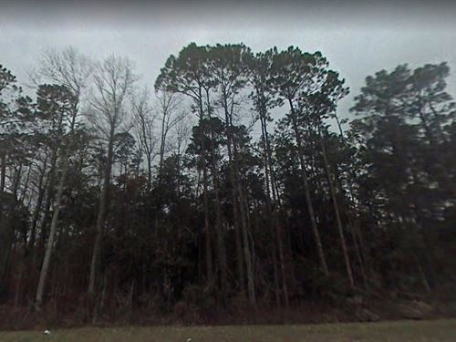 Jackson County, Fl $22,500 : Alford : Jackson County : Florida