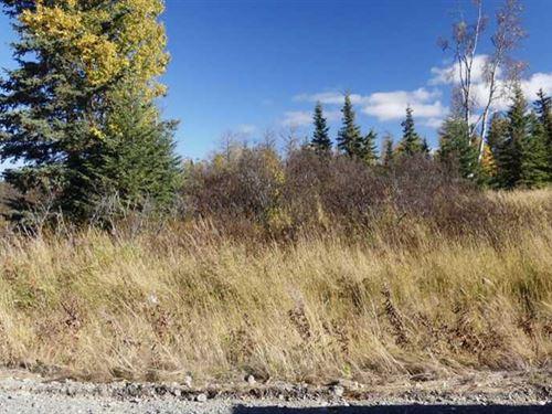 Perfect Lot to Build in Ninilchik : Ninilchik : Kenai Peninsula Borough : Alaska