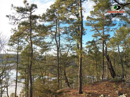 Lake View Lot/Greers Ferry Lake : Greers Ferry : Cleburne County : Arkansas