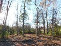 Land TN Shiloh Park & Golfing : Adamsville : Hardin County : Tennessee