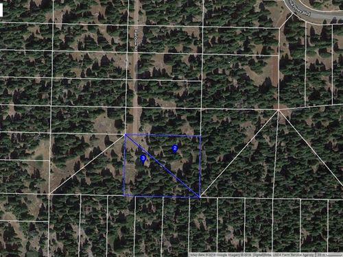Over 2 Acres Pines Modoc County : Alturas : Modoc County : California