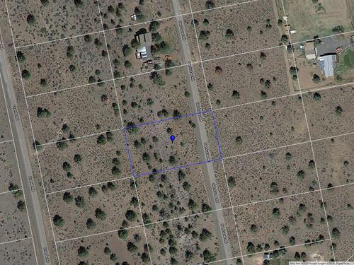 .91 Acre Lot Modoc County, Northern : Alturas : Modoc County : California