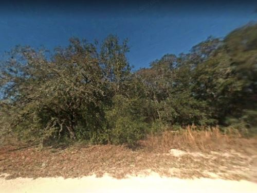 Hernando County, Fl $18,000 : Dade City : Hernando County : Florida
