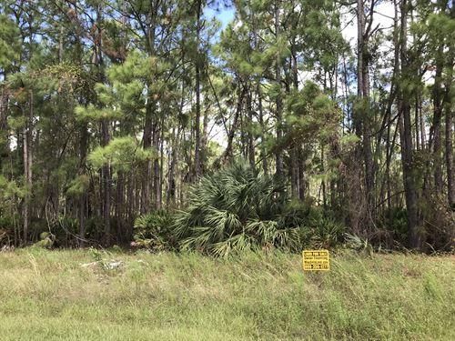 2.85 Ac, Near Proposed Interchange : North Port : Sarasota County : Florida