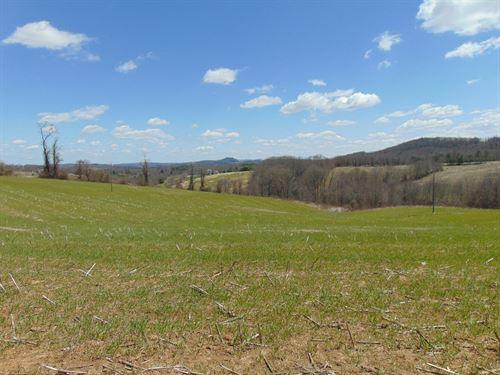 Chestnut Grove Church Road, Sparta : Sparta : Alleghany County : North Carolina